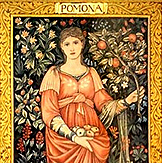 Pomona, Goddess of orchards